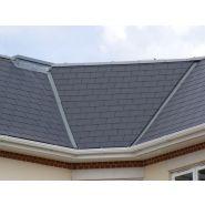 Bravan 42010003 - ardoise pour la toiture - cembrit - dimension 4x400x240 mm