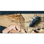 Cif 2010 produit de traitement du bois