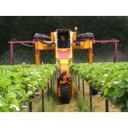 Tracteur enjambeur - Damcon - Pour fraises