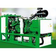 agenitor.  Groupes électrogènes Industriel - 2G Energie sas - 75 à 450 kW.