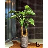 Grande alocasia artificielle de 145 cm - tanaman