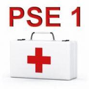 PSE 1
