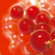 FRUIT SURGELÉ GROSEILLE (EGRAPPÉE)