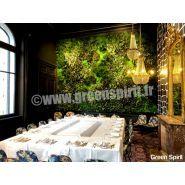 Murs végétaux - green spirit - stabilisé