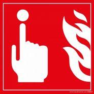 4180417 - Panneau d'incendie - HANDINORME - Dimension : H 150 x l 150 mm