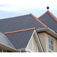 Bravan 42010008 - Ardoise pour la toiture - Cembrit - dimension 4x440x290 mm