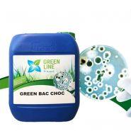 GREEN BAC CHOC RÉFÉRENCE  DES-GREBACCHO/5