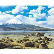CIRCUIT AU CHILI : DéSERT, LACS ET GLACIERS