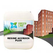 Resine accroch plus référence  mai-resaccplu/12kg
