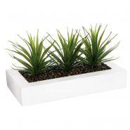 Centre de table aloe vera plant 31cm blanc - paris prix