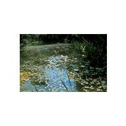 Sika sarnafil sur for Membrane etanche bassin