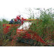 Récolteuse à baies joanna 4 - weremczuk - puissance minimale requise 40 hp - productivité 0.15 à 0.25 ha/h