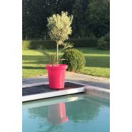 Pot de fleurs  rond  xxl delight 75 l rose