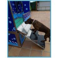 Dog-wash pg5