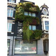 Top600 - murs végétaux - green city - léger