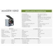Ecogen-10ag -  cogénération - cogengreen - puissance électrique 9,9 kw