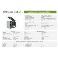 Ecogen-10sg -  cogénération - cogengreen - puissance électrique 9,9kw