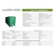 Ecogen-140sg -  cogénération - cogengreen - puissance électrique 140kw (120 kw en groupe secours)