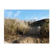 Ganivelle en écart - clôtures en bois - leneindre - de 2 et 4 cm