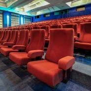 Vision br - fauteuil de cinéma - quinette gallay - encombrement : 60 cm